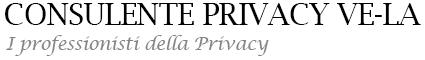 Consulente Privacy Vela